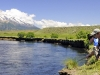 patagonia-trout-fishing-banner