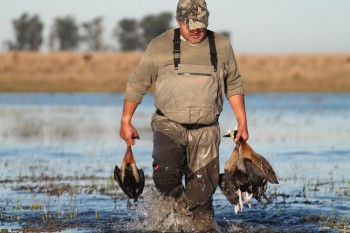 Argentina travel, Duck hunting guides