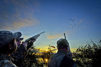 Argentina high volume duck hunting