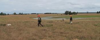Perdiz mixed bag hunting Argentina